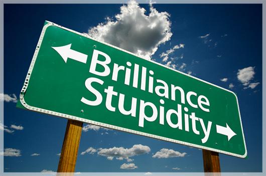 Stupid businesses